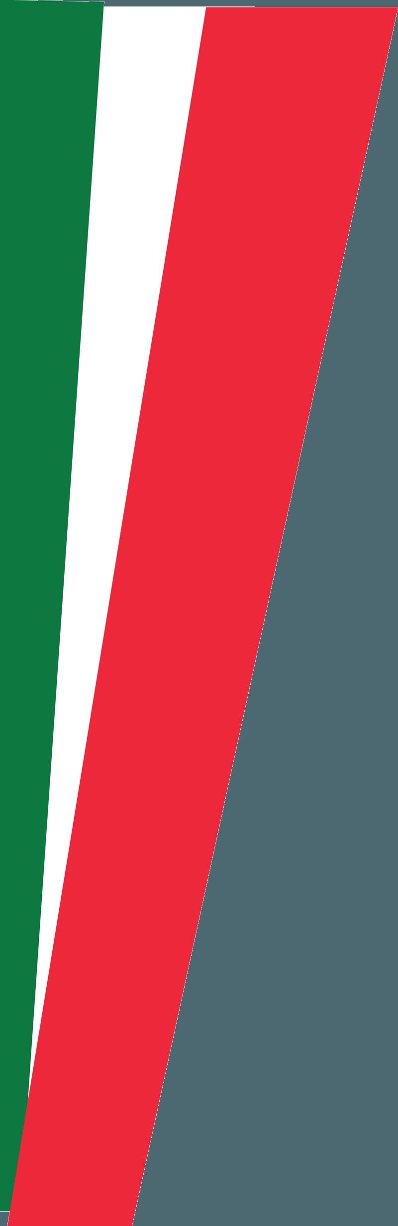 bandiera 1
